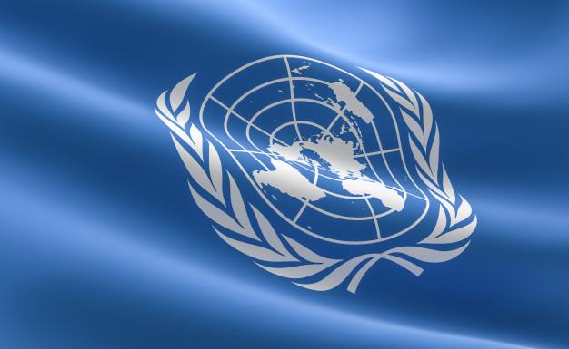 Expertos en DDHH de ONU condenan uso de la fuerza contra manifestantes pacíficos enEEUU