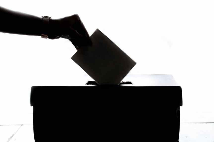 Observadores electorales internacionales celebran alta participación electoral; votación durantepandemia